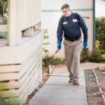5 Points To Keep In Mind While Choosing The Reliable The Pest Control Services