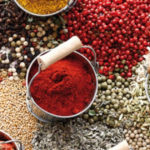 CONTACT | Spices | Dried Vegetables | Spray Dried Juice powder