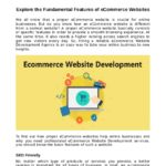 Explore the Fundamental Features of eCommerce Websites