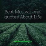 Best Motivational Quotes And Positive Quotes About Life